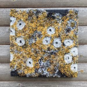 Photo: Coastal Dreams – Textile Art